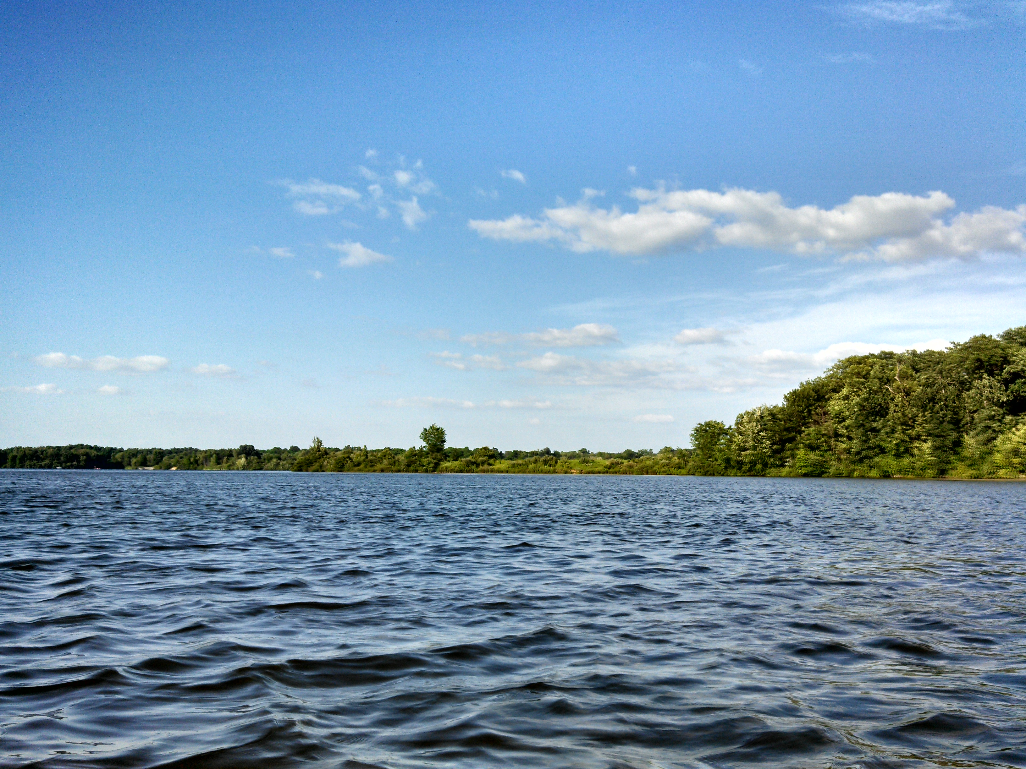 Lake Ovid Shoreline from Kayak